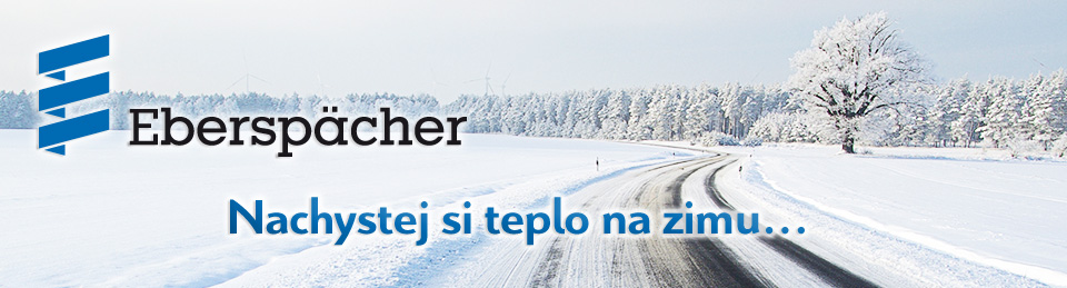 Strafle im Winter - road in winter 02